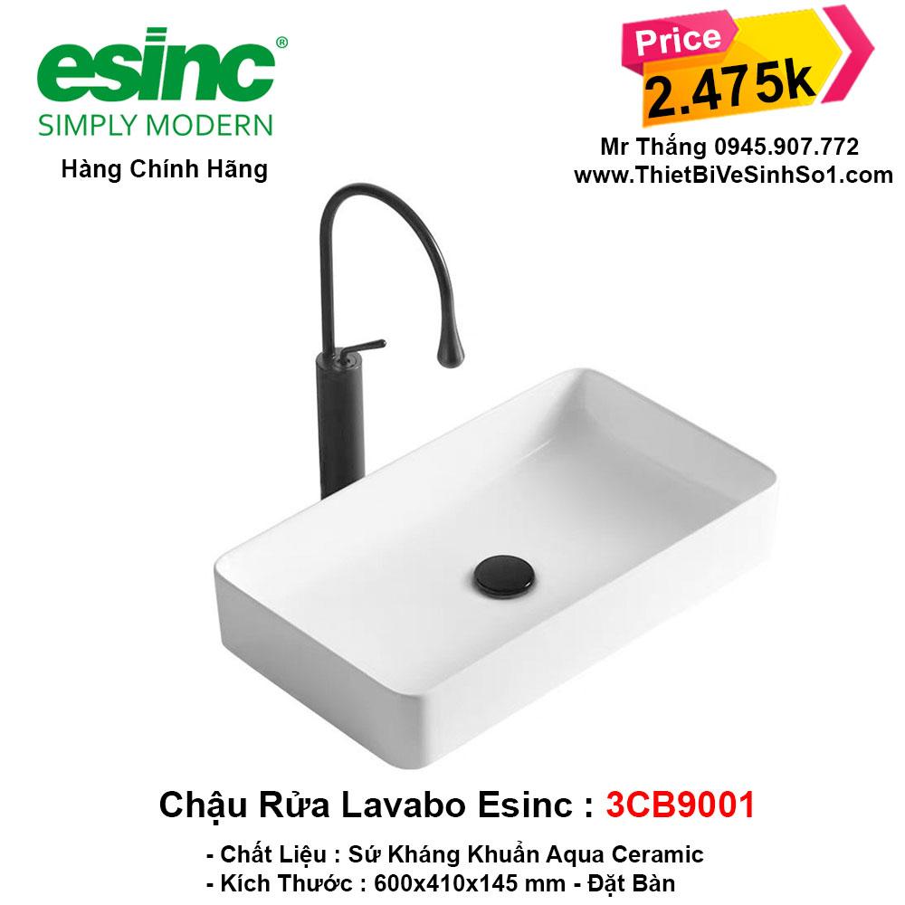 Chậu Lavabo Esinc 3CB9001